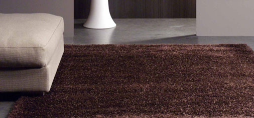 Brown & Chocolate Rugs