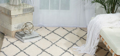 White, Ivory and Cream Rugs