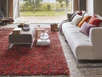 Orange & Terracotta Rugs Rug